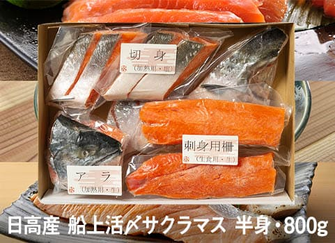 サクラマス「船上活〆」食べづくしセット 半身800g(北海道 日高産)