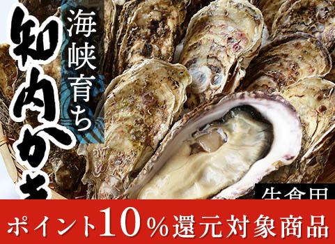 海峡育ち 知内かき(殻付生食用・25個入)【お中元ギフト】