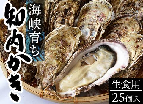 【販売終了】海峡育ち 知内かき(殻付生食用・25個入)
