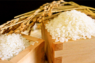 精米後のお米